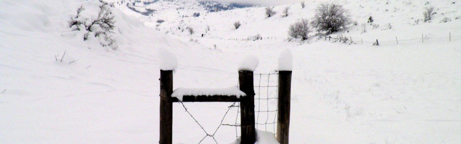 hi-gate-in-snow